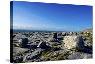 Black Head in the Burren, a Karst Formation in County Clare, Ireland-Chris Hill-Stretched Canvas Print
