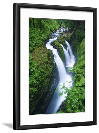 View of Sol Duc Falls in Olympic National Park, Washington-Keith Ladzinski-Framed Photographic Print