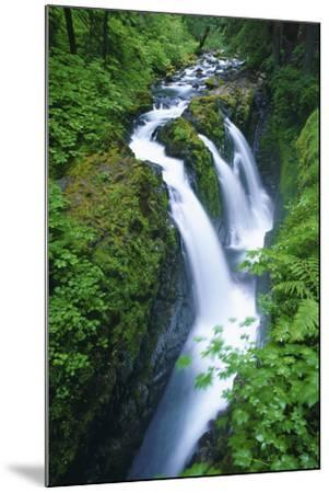 View of Sol Duc Falls in Olympic National Park, Washington-Keith Ladzinski-Mounted Photographic Print