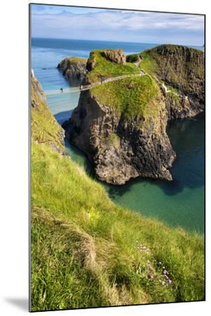 Carrick-A-Rede Rope Bridge in Northern Ireland-Chris Hill-Mounted Photographic Print