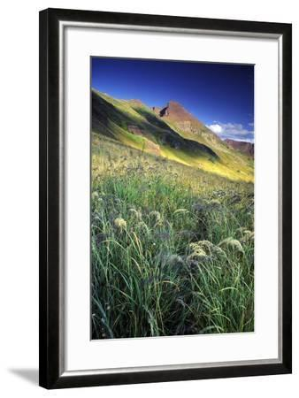 Setting Sun Light and Grass on the Backside of the Maroon Bells Mountains-Keith Ladzinski-Framed Photographic Print