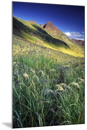 Setting Sun Light and Grass on the Backside of the Maroon Bells Mountains-Keith Ladzinski-Mounted Photographic Print
