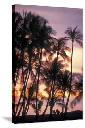 Palm Trees and a Couple in Beach Chairs at Sunset at Anaehoomalu Bay-Design Pics Inc-Stretched Canvas Print