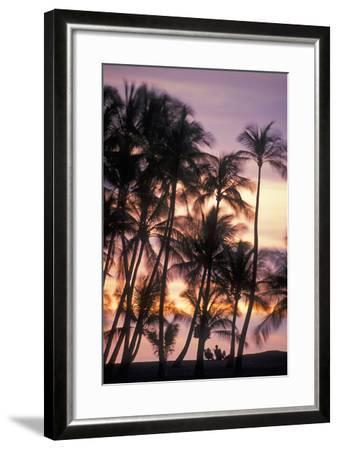 Palm Trees and a Couple in Beach Chairs at Sunset at Anaehoomalu Bay-Design Pics Inc-Framed Photographic Print