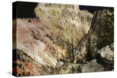 The Grand Canyon of the Yellowstone-Marc Moritsch-Stretched Canvas Print