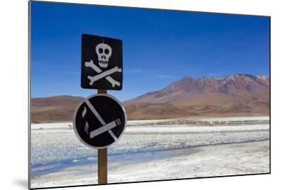 A Skull and Cross Bones Danger Sign on Edge of a Dried Up Lagoon-Mike Theiss-Mounted Photographic Print