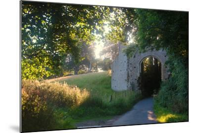 Ruins of the 13th Century 'New Gate' Leading to the Ancient Village of Winchelsea-Roff Smith-Mounted Photographic Print