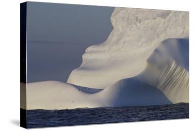 Distant Penguins on an Iceberg-Jim Richardson-Stretched Canvas Print