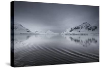 Icebergs and Mountains Reflected in a Rippled Surface of the Ocean-Jim Richardson-Stretched Canvas Print