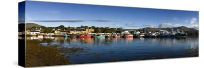 Castletown Bearhaven Harbour in Beara, Cork-Chris Hill-Stretched Canvas Print