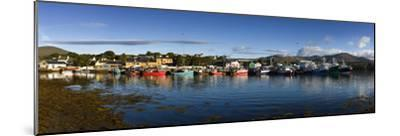Castletown Bearhaven Harbour in Beara, Cork-Chris Hill-Mounted Photographic Print