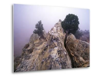 Foggy Morning at Garden of the Gods, Colorado-Keith Ladzinski-Metal Print