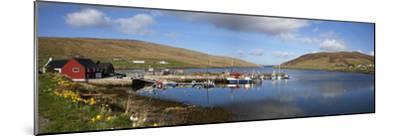 Boats in Marina; Shetland Scotland-Design Pics Inc-Mounted Photographic Print