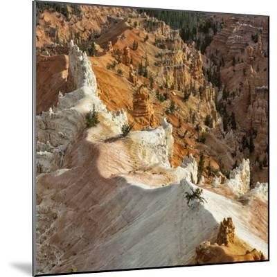 A High Angle View of Hoodoos in Cedar Breaks National Monument, a Natural Amphitheater-Babak Tafreshi-Mounted Photographic Print