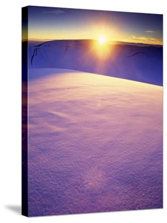 A Rarely Seen View of Snow-Covered Sand Dunes, at Sunset-Keith Ladzinski-Stretched Canvas Print