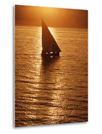 Dhow Heading Out to Sea at Dawn-Design Pics Inc-Metal Print