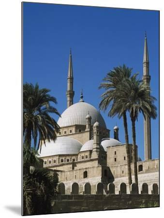 Mohammed Ali Mosque in Citadel of Cairo-Design Pics Inc-Mounted Photographic Print