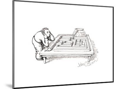 Fish maze - Cartoon-John O'brien-Mounted Premium Giclee Print