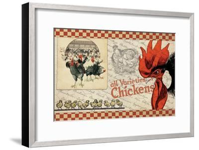 Checkered Chicken 6--Framed Giclee Print