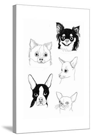 Cutie Poochie-Jennifer Camilleri-Stretched Canvas Print