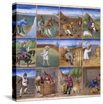 Various Agricultural Works - by Colin D'amiens--Stretched Canvas Print