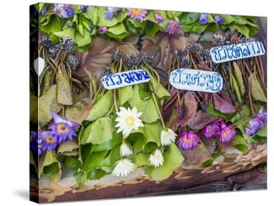 Damnoen Saduak Floating Market-Terry Eggers-Stretched Canvas Print