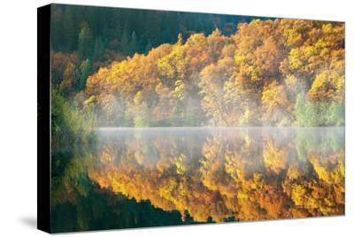 Autumn Fog-Dennis Frates-Stretched Canvas Print