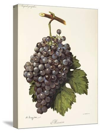 Mission Grape-A. Kreyder-Stretched Canvas Print