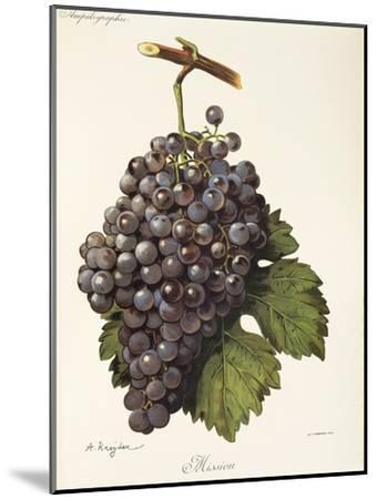 Mission Grape-A. Kreyder-Mounted Giclee Print