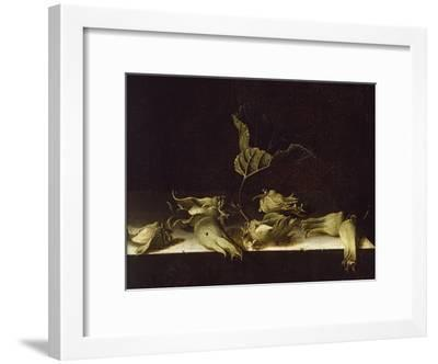 Still Life with Hazel-Nuts, 1696-Adrian Coorte-Framed Giclee Print