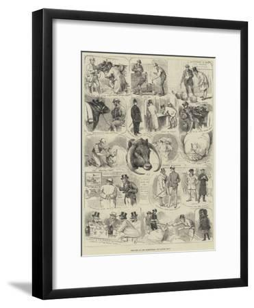 Sketches at the Birmingham Fat Cattle Show-Alfred Courbould-Framed Giclee Print