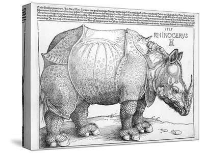 The Rhinoceros, 1515-Albrecht D?rer-Stretched Canvas Print