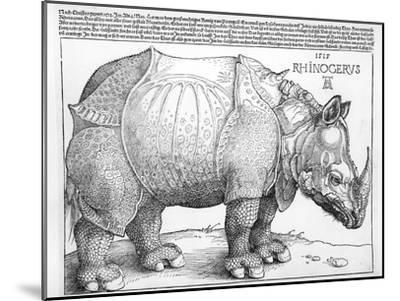 The Rhinoceros, 1515-Albrecht D?rer-Mounted Premium Giclee Print