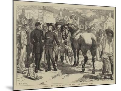 Buying Horses in Brittany for the French Army-Basil Bradley-Mounted Giclee Print