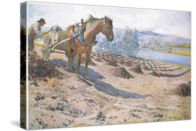 Muck Spreading on a Fallow Field-Carl Larsson-Stretched Canvas Print