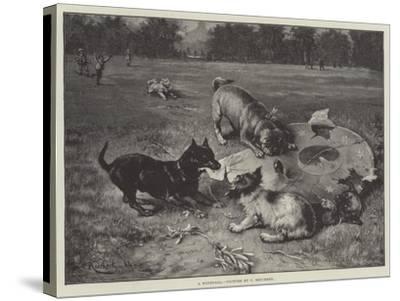 A Windfall-Carl Reichert-Stretched Canvas Print