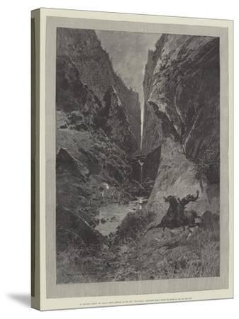 Wild Darrie-Charles Auguste Loye-Stretched Canvas Print