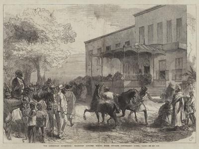 The Abyssinian Expedition, Transport Officers Buying Mules Opposite Shepheard's Hotel, Cairo-Charles Robinson-Giclee Print
