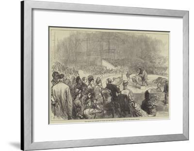 The Prince and Princess of Wales and the King and Queen of Greece at the Crystal Palace-Charles Robinson-Framed Giclee Print