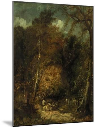 Wooded Landscape-David Cox-Mounted Giclee Print
