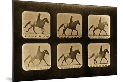 Horses. Irregular, 'Animal Locomotion' Series, C.1881-Eadweard Muybridge-Mounted Giclee Print