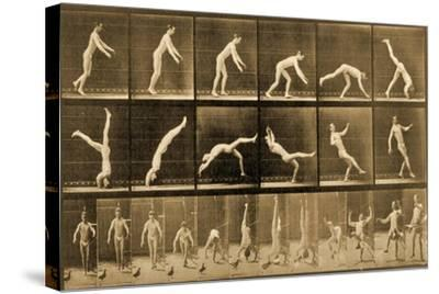 Plate from 'Animal Locomotion' Series, C.1887-Eadweard Muybridge-Stretched Canvas Print