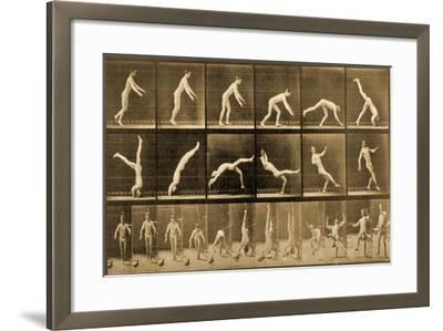 Plate from 'Animal Locomotion' Series, C.1887-Eadweard Muybridge-Framed Giclee Print