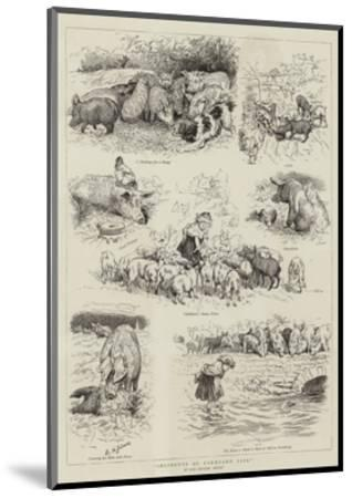 Incidents of Farmyard Life-Edward Killingworth Johnson-Mounted Giclee Print