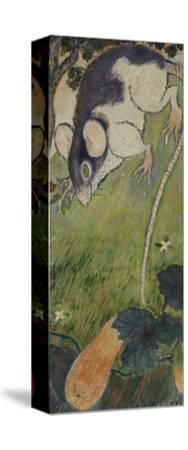 The Rat-Felix Pissarro-Stretched Canvas Print