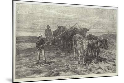 Ploughing on the Sussex Downs-Frank Dadd-Mounted Giclee Print