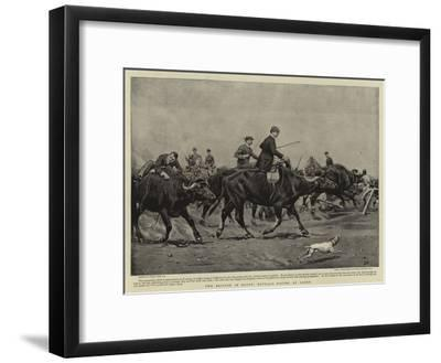 The British in Egypt, Buffalo Racing at Cairo-Frank Dadd-Framed Giclee Print