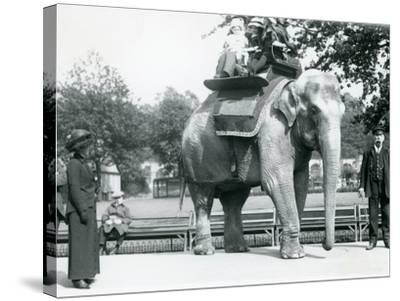 Female Indian Elephant 'Lukhi' Giving Children a Ride with Keeper Charles Eyles-Frederick William Bond-Stretched Canvas Print