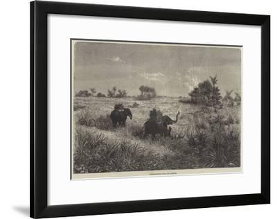 India and the Prince of Wales, Tiger-Shooting from the Howdah-Frederic Theodore Lix-Framed Giclee Print