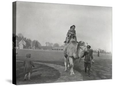 An Arabian Camel Taking a Pair of Children for a Ride at Zsl Whipsnade, March 1932-Frederick William Bond-Stretched Canvas Print